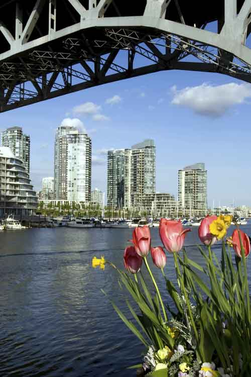 City of Vancouver and tulips
